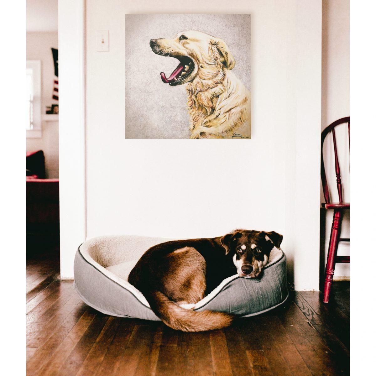 Decoracion de interiores, perro, cuadro, expresividad