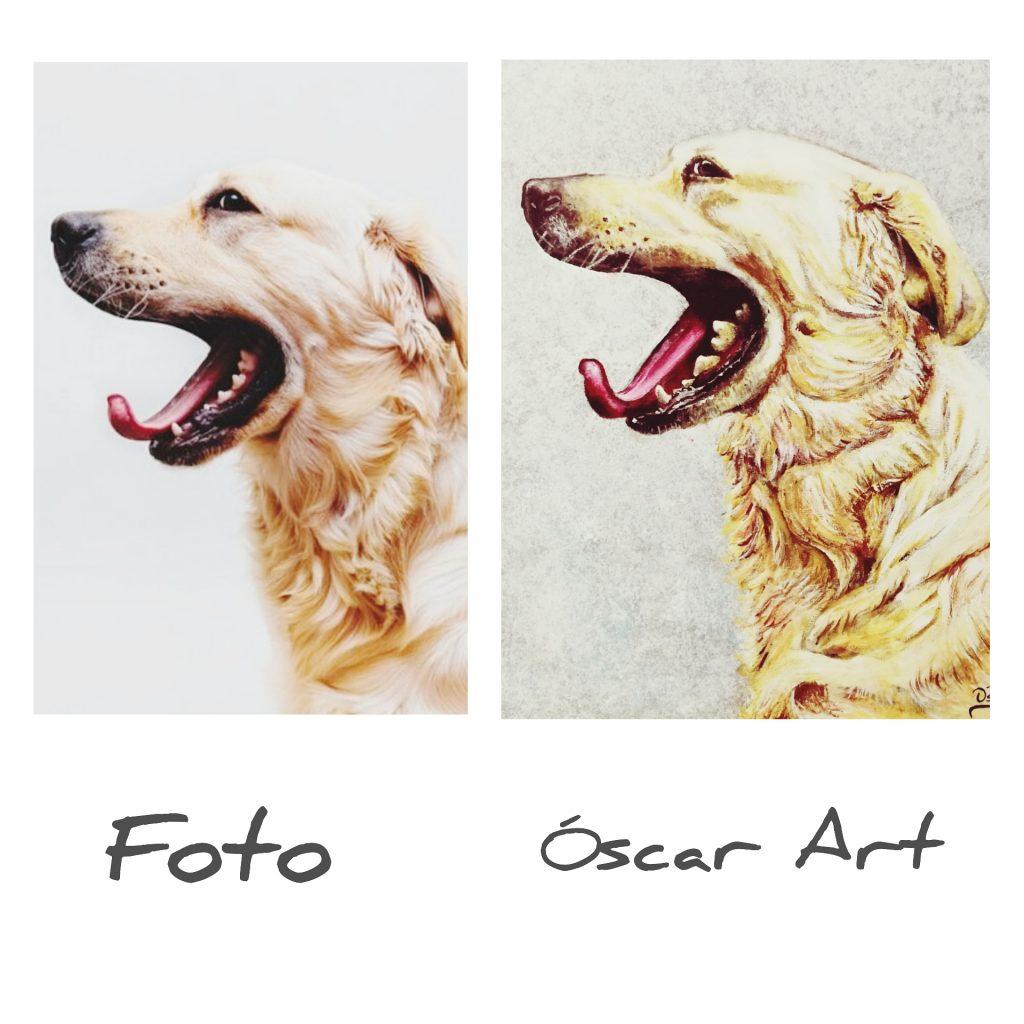 realidad versus dibujo perro